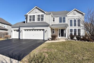 Geneva Single Family Home For Sale: 39w016 Revere House Lane