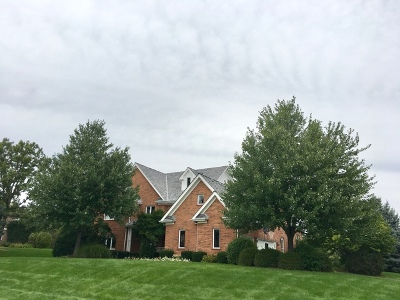 Woodstock Single Family Home For Sale: 1620 Bull Valley Drive