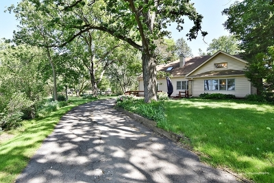 St. Charles Single Family Home For Sale: 42w353 Empire Road