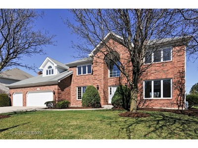 Naperville Single Family Home For Sale: 3642 Monarch Circle