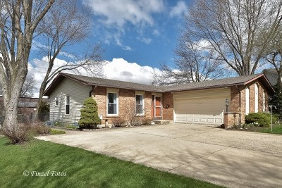 Algonquin IL Single Family Home New: $249,900