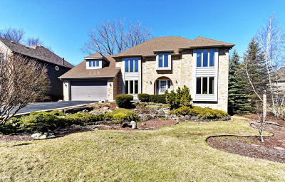 Darien Single Family Home For Sale: 8800 Royal Swan Lane