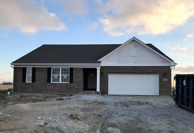 New Lenox Single Family Home For Sale: 974 Redcliffe Road