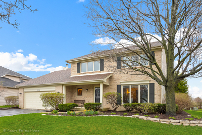 Naperville Single Family Home New: 2036 Engle Road