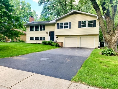 Naperville Single Family Home For Sale: 848 Lilac Lane