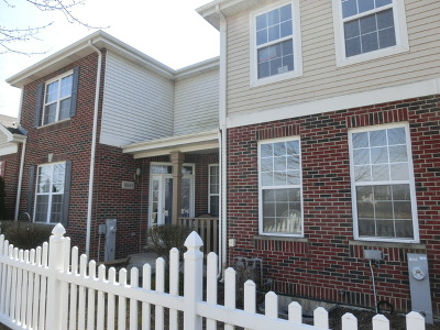 Tinley Park Condo/Townhouse For Sale: 18541 Dearborn Court