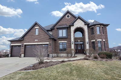 Plainfield Single Family Home For Sale: 27029 Rustic Wood Lane
