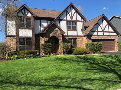 Naperville Single Family Home For Sale: 528 Flock Avenue