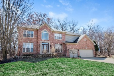 Palatine Single Family Home For Sale: 641 West Ruhl Road