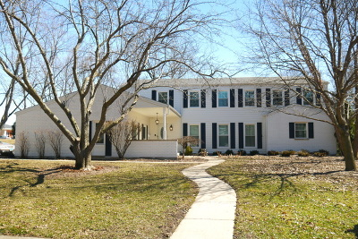 Naperville Single Family Home For Sale: 1440 Royal St George Drive