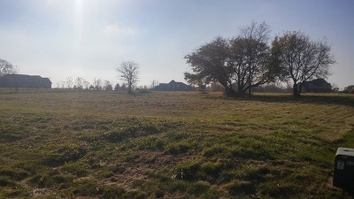 Elburn Residential Lots & Land For Sale: Lot 11 Blackberry Crossing Circle