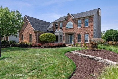 Batavia Single Family Home For Sale: 785 Wind Energy Pass