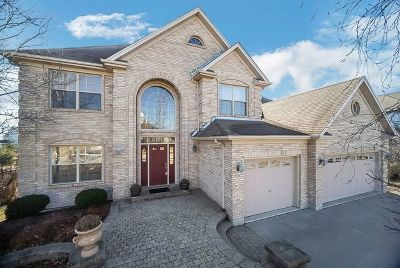 Plainfield Single Family Home For Sale: 13613 Arborview Boulevard