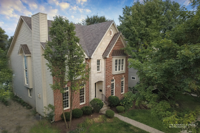 Naperville Single Family Home For Sale: 536 South Webster Street