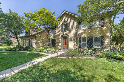 Naperville Single Family Home For Sale: 856 Cardiff Road