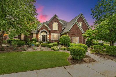 Orland Park Single Family Home For Sale: 10927 Antelope Lane