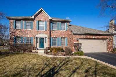 Naperville Single Family Home For Sale: 4855 Fesseneva Lane