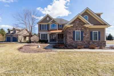 McHenry Single Family Home For Sale: 1502 Providence Drive