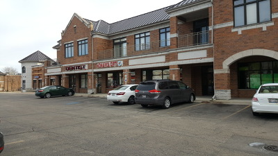 West Chicago Condo/Townhouse For Sale: 550 Main Street #204