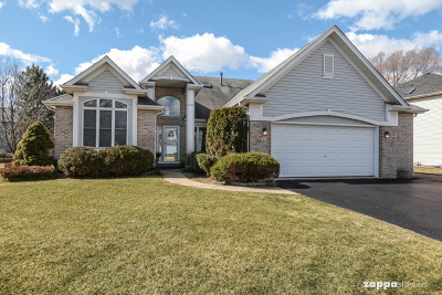Bolingbrook Single Family Home For Sale: 583 Warbler Drive
