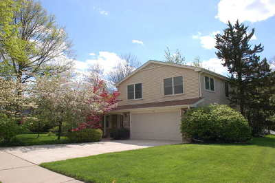 Naperville Single Family Home For Sale: 1581 Chippewa Drive