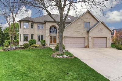 Schaumburg Single Family Home For Sale: 802 Tory Court