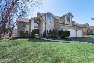 Batavia  Single Family Home For Sale: 624 Bailey Drive