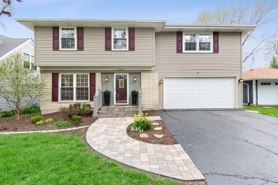 Downers Grove Single Family Home For Sale: 4224 Earlston Road