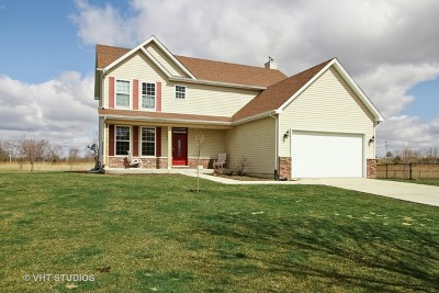 Kankakee Single Family Home For Sale: 2007 Stone Hedge Court
