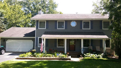 St. Charles Single Family Home For Sale: 5n581 Hidden Springs Drive