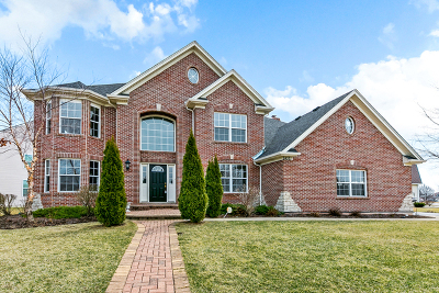 Plainfield Single Family Home For Sale: 24521 Kennedy Circle