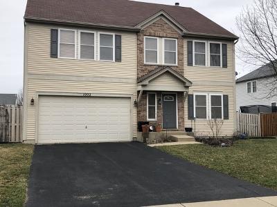 Joliet Single Family Home Price Change: 1002 Treesdale Way