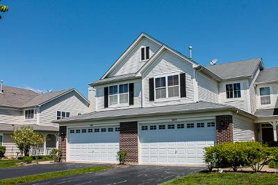 Oswego Condo/Townhouse New: 383 Chesapeake Lane