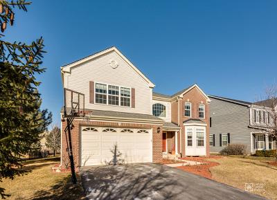 Hoffman Estates Single Family Home For Sale: 5934 Betty Gloyd Drive