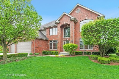 Orland Park Single Family Home For Sale: 10437 Stone Hill Drive