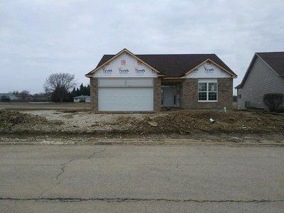 Lockport Single Family Home For Sale: 17520 Bonneville Drive