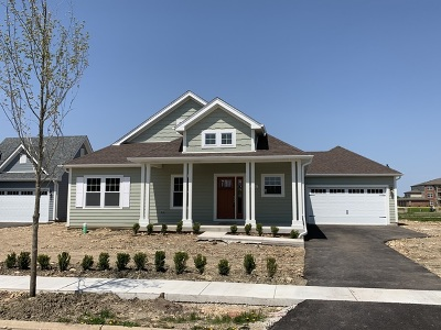 Channahon Single Family Home For Sale: 25232 West Town Center Circle