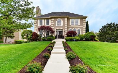 Burr Ridge Single Family Home For Sale: 6842 Fieldstone Drive