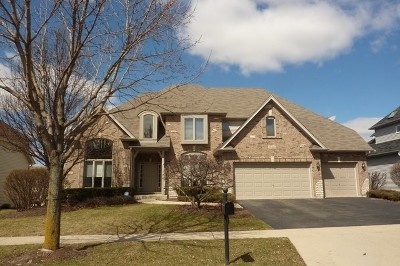 South Elgin Single Family Home For Sale: 540 Cole Drive