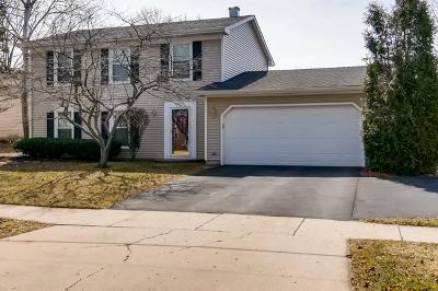 Hoffman Estates Single Family Home For Sale: 955 Freeman Road