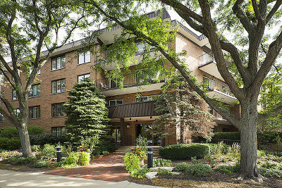 Winnetka Condo/Townhouse For Sale: 711 Oak Street #304