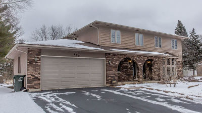 Naperville Single Family Home For Sale: 479 Cassin Road