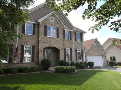 Carol Stream Single Family Home For Sale: 1189 Adler Lane