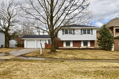 Glen Ellyn Single Family Home For Sale: 21w716 Buckingham Road