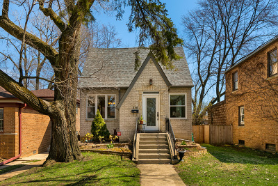 Evanston Single Family Home New: 315 Darrow Avenue