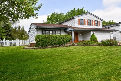 Schaumburg Single Family Home For Sale: 1150 Crest Court