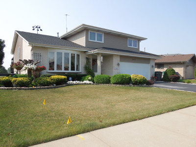 Orland Hills Single Family Home For Sale: 16449 Haven Avenue