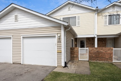 Schaumburg Condo/Townhouse For Sale: 606 Bayview