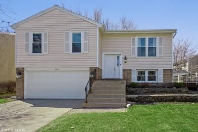 Hoffman Estates Single Family Home For Sale: 5010 Lichfield Drive
