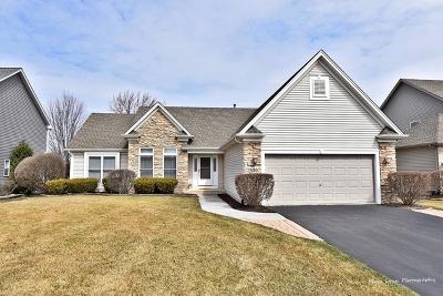 North Aurora Single Family Home For Sale: 520 Hammer Lane